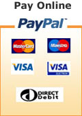 Pay taxi fee online by PayPal